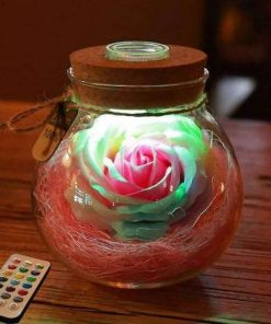 bloom led rose bottle lamp image photo cover