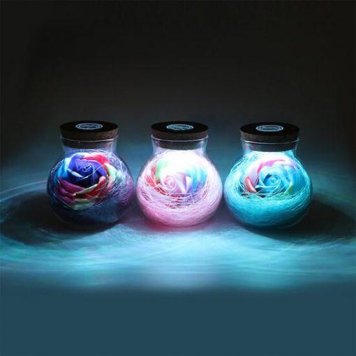 rose-light-bottle-review