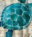sea-turtle-shower-curtain