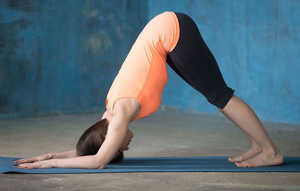 dolphin yoga pose