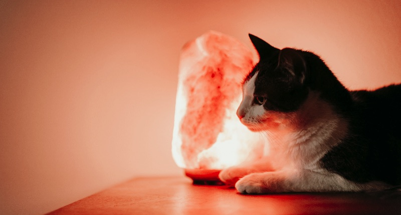 What Do Salt Lamps Do-If Anything